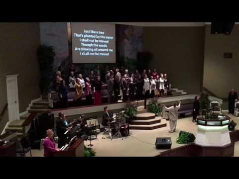 Lighthouse Sanctuary Choir: I Shall Not Be Moved!