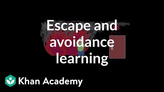 Operant conditioning: Escape and avoidance learning | Behavior | MCAT | Khan Academy