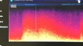 SONIDO DEL TERREMOTO JAPON - EARTHQUAKE SOUND -地震サウンド日本 17-03-11
