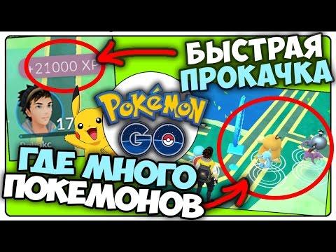 Pokemon Go / Покемон Го ► 20.000 ОПЫТА за 10 минут ► (Быстрая прокачка)