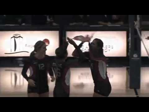 Volleyball vs #20 Colorado Mesa - Metro State