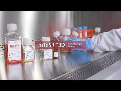Technical Video: MTeSR™3D Passaging Protocol