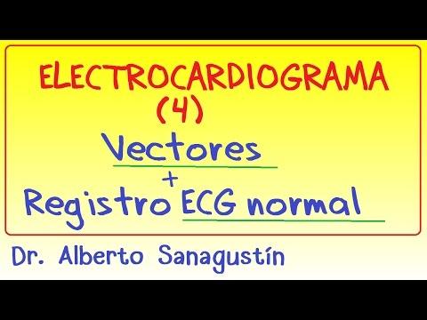 Electrocardiograma  (4): vectores y registro ECG normal