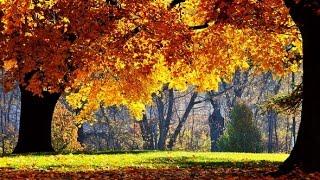 Осенние стихи для малышей