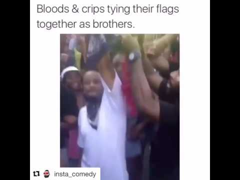Bloods And Crips Tying Their Flags Together Youtube