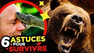 6 ASTUCES pour SURVIVRE AUX ANIMAUX SAUVAGES