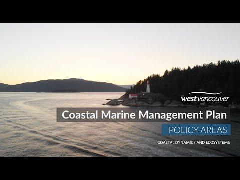 Coastal dynamics and ecosystems