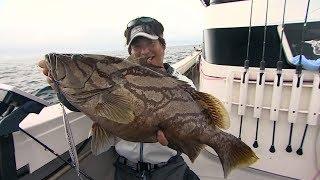 【釣り百景】#193 南方の海に夢を追う スロー系ジギングで挑む巨大魚