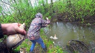 Ловля КРУПНЫХ КАРАСЕЙ на МИКРОРЕЧКЕ РЫБАЛКА на поплавок в КАМЫШЕ и КОРЯГАХ