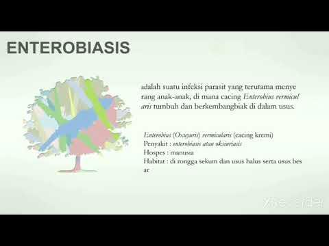 enterobiasis adalah)