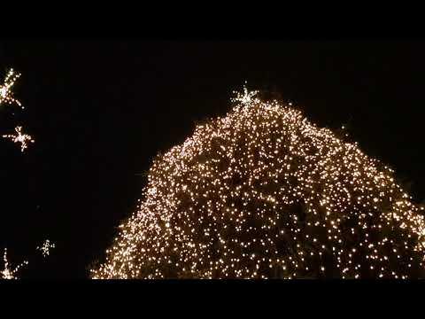 Ljubljana je prižgala praznično razsvetljavo