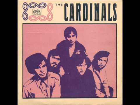 The Cardinals - Stín magnolií