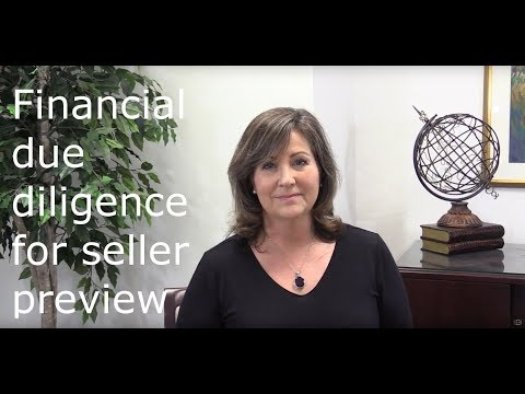 Financial due diligence for the business seller - class preview