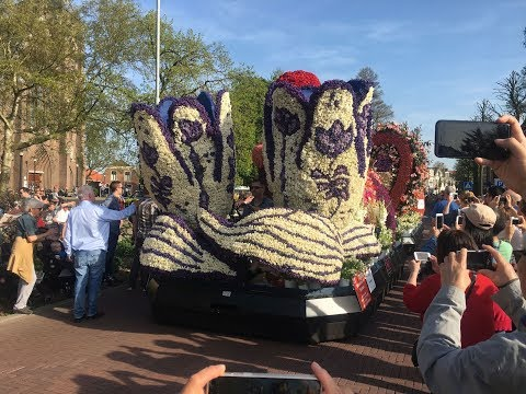 Flower Parade 2018_The Netherlands