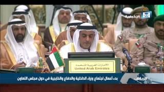 وزير الداخلية الإماراتي: نتطلع إلى مستقبل أفضل للمنطقة وشعوبها