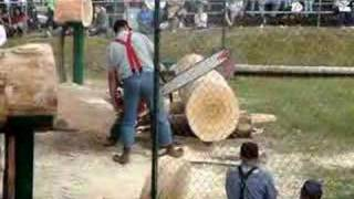 Gambar cover Chainsaw Mishap from the Buckley Log Show