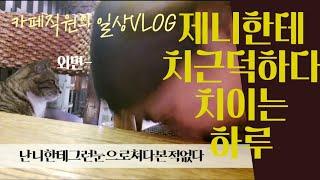 [카페일상] 고양이와 함께하는 금요일 / 수제쿠키포장