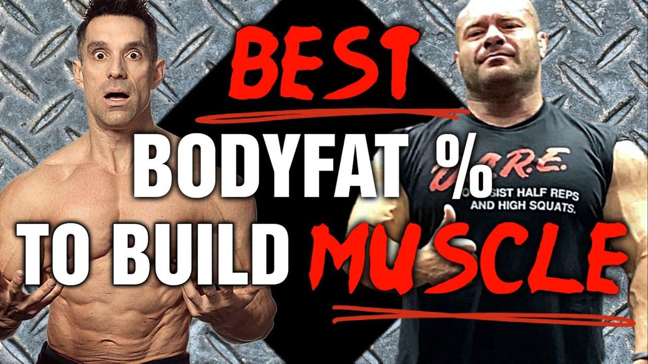 Best Bodyfat % To Gain Muscle?