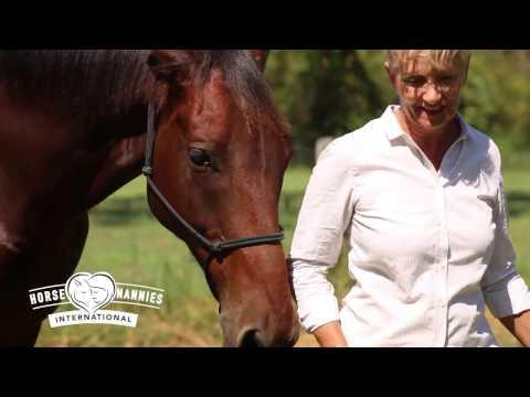 Horse Nannies International