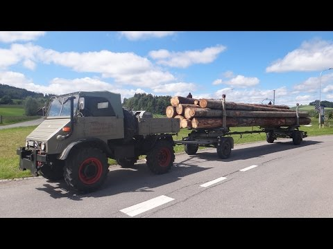 Unimog 411 im Langholztransport