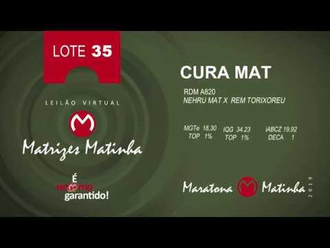 LOTE 35 Matrizes Matinha 2019
