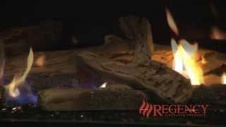Regency Horizon Hz40e Modern Gas Fireplace