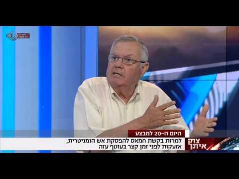 Prof. Gerald Steinberg, Commentator, Channel 1, IBA Hebrew, July 27, 2014