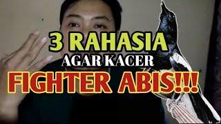 Cara Membuat Burung Kacer fighter Abis!!!