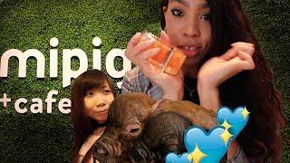 Micro Pig Cafe! 🐷x  Date Night?💖| JAPAN VLOG #34