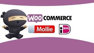 WooCommerce iDEAL Mollie plugin voor betalingen