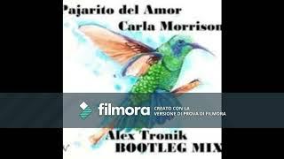 Carla Morrison   Pajarito Del Amor  ALEX TRONIK BOOTLEG MIX