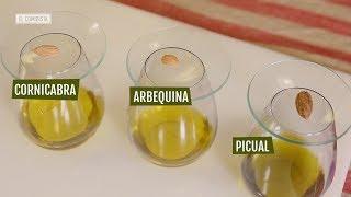 EL COMIDISTA | Cómo reconocer un buen aceite de oliva
