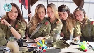 Travel To israel   israel History Documentary in Urdu And Hindi   Spider Tv   اسرائیل کی سیرvia torc