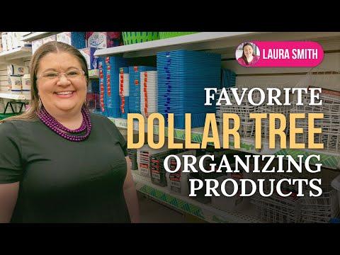 Dollar Tree Haul - Organizing Products