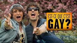 Est-ce que c'est gay? (McFly & Carlito)