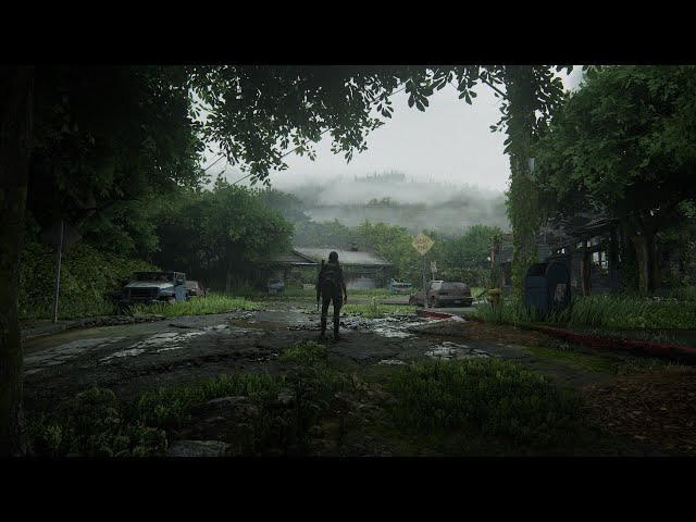 The Last of Us™ Part II PS4 Slim Gameplay: Seattle Day 2 - Hillcrest