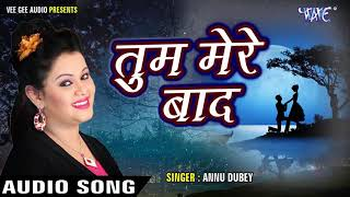 Tum mere baad Mohabbat Ko Taras Jaoge song MP3 Annu Dubey