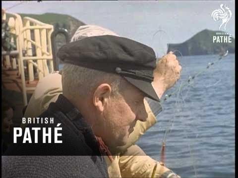 Fishing Festival (1961)
