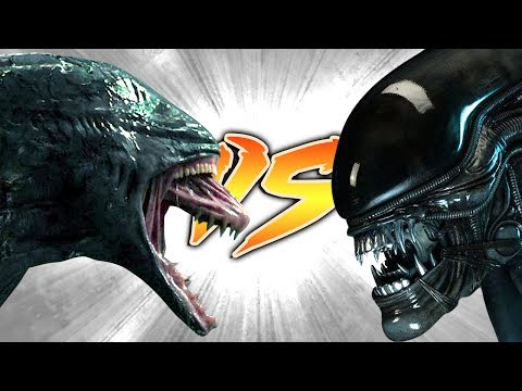 DEACON VS XENOMORPH