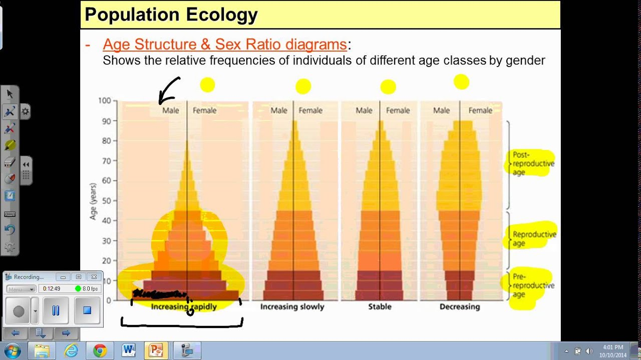 hight resolution of age structure diagram