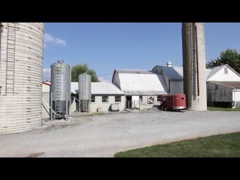 Beiler Family Farm (Paradise, PA) Reviews Their Solar Installation - Paradise Energy Solutions