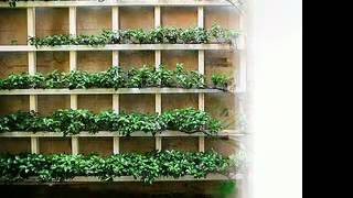 Vertical Garden Diy Ideas