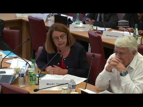 Commission des affaires étrangères : M. Jean-Yves Le Drian