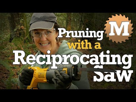 Pruning with a Reciprocating Saw