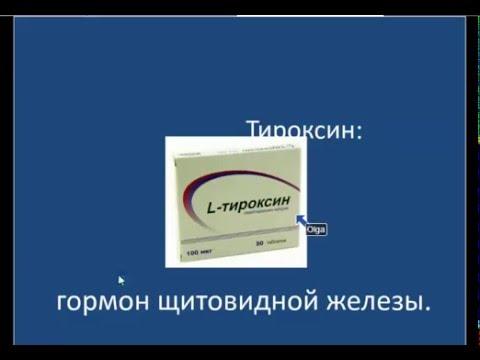 Тироксин гормон: норма, недостаток и избыток, анализы