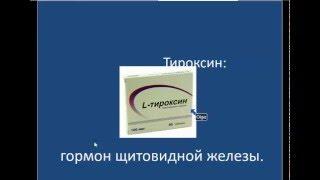 Тироксин гормон щитовидной железы 051215