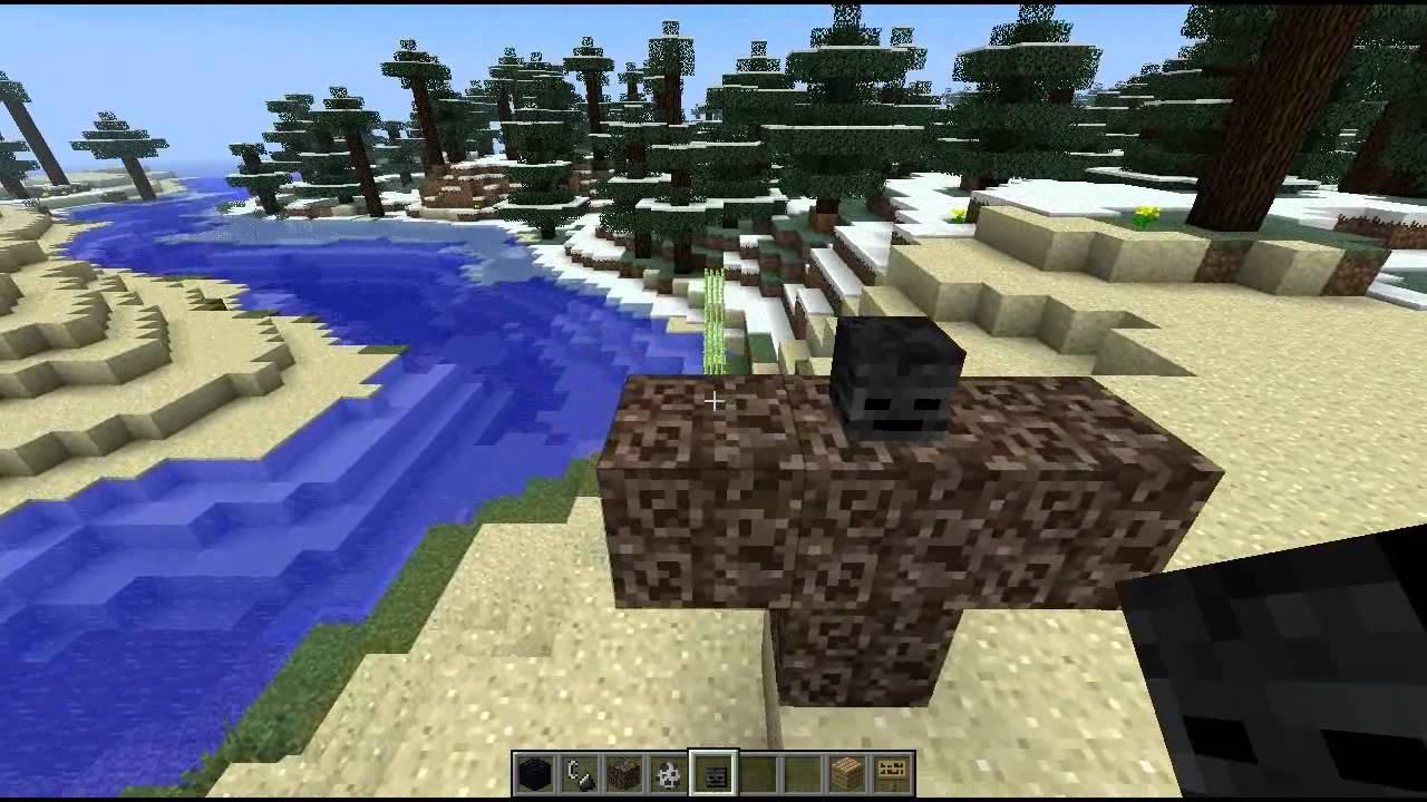 Minecraft snapshot 12w36a hoved dekoration styr en gris for Minecraft dekoration