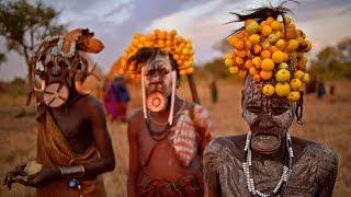 Путешествия по Африке - животные, люди, саванна