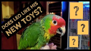 My Bird's Cage Tour and Setup | THE LEO STORY | PART #6