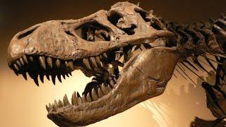 Больше, чем тиранозавр - #1 Док. Эпизод.